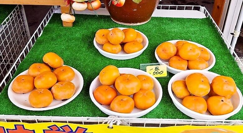 次郎柿の販売(一盛)